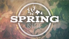 Church Mini Movie Springtime Worship
