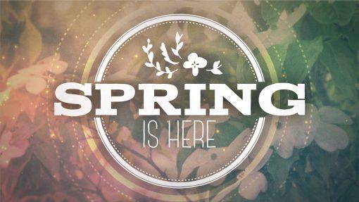 Church Mini Movie Springtime Worship